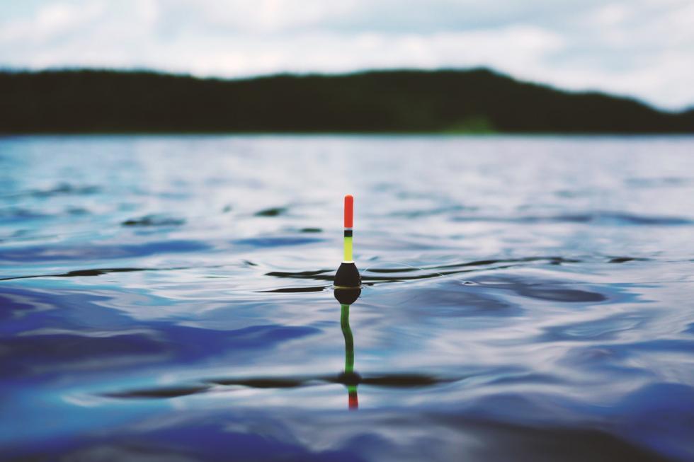 Wędkarstwo spławikowe. Jak skutecznie łowić przy użyciu spławika?